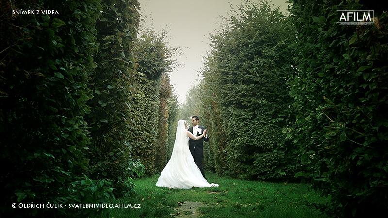 Krásná svatba - Obrázek č. 7
