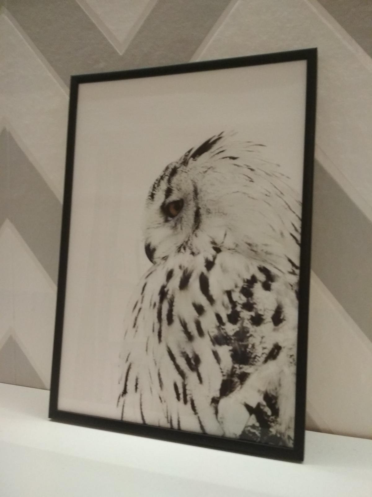 Moje galerie - Obrázek č. 1