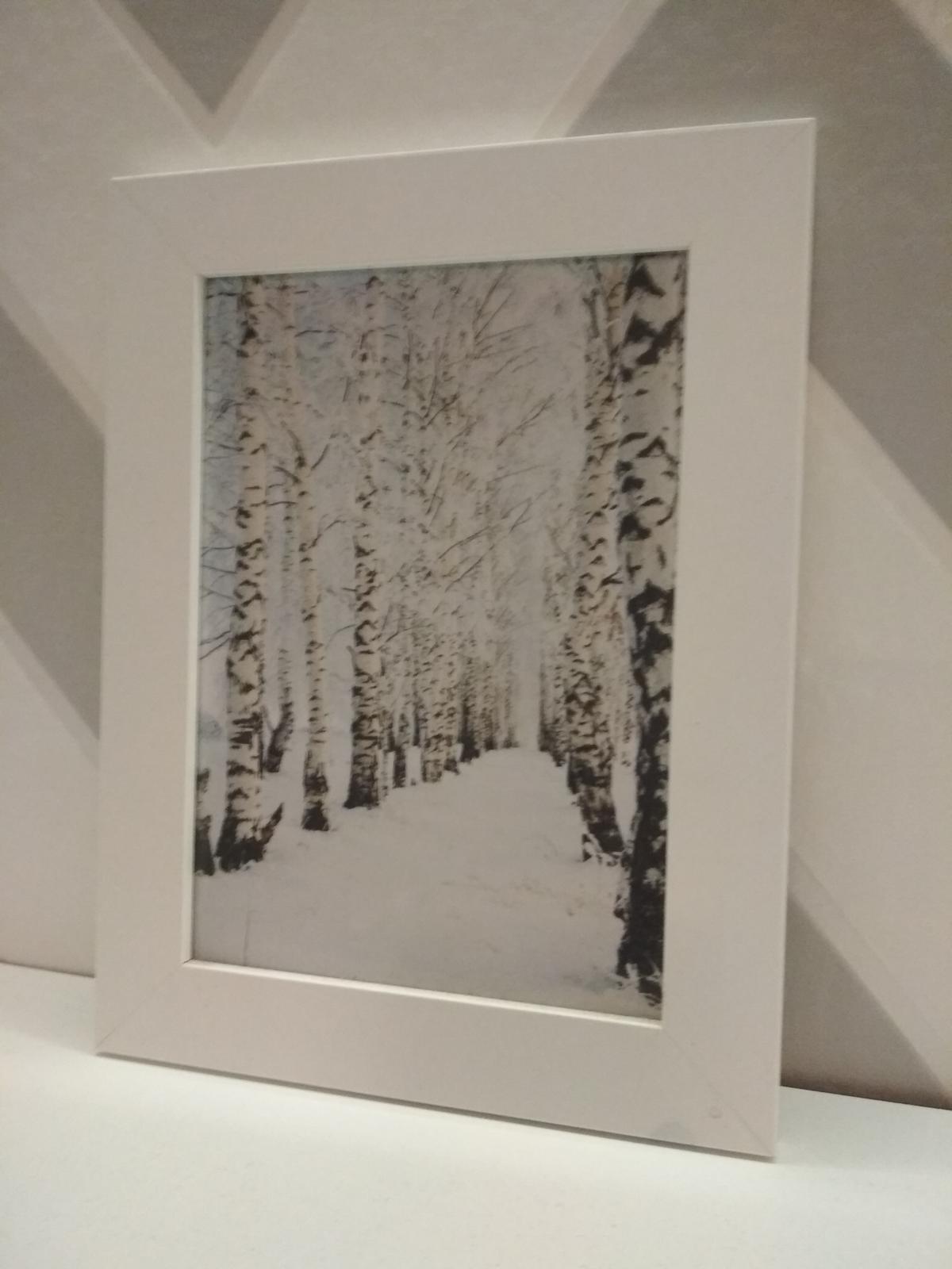 Moje galerie - Obrázek č. 12