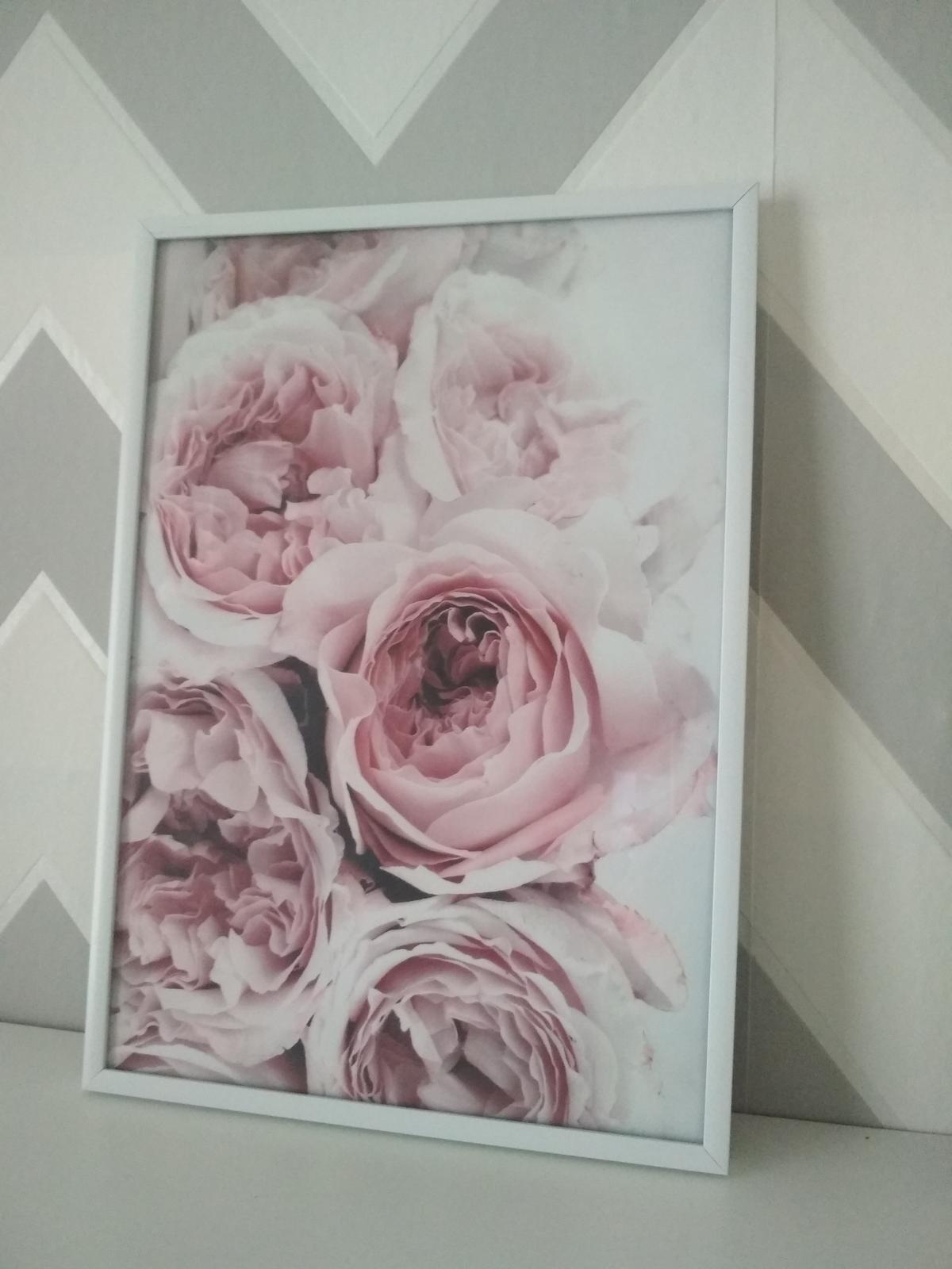 Moje galerie - Obrázek č. 36