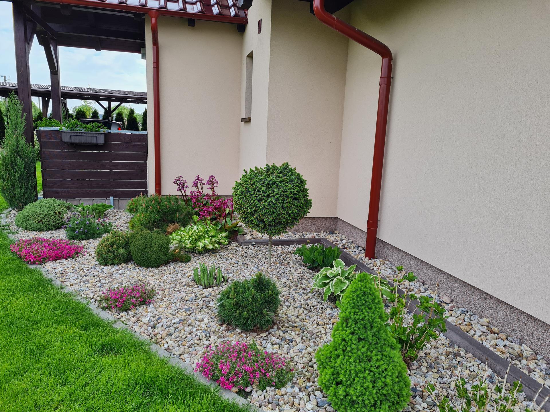 Zahrada 2021 - Obrázek č. 10