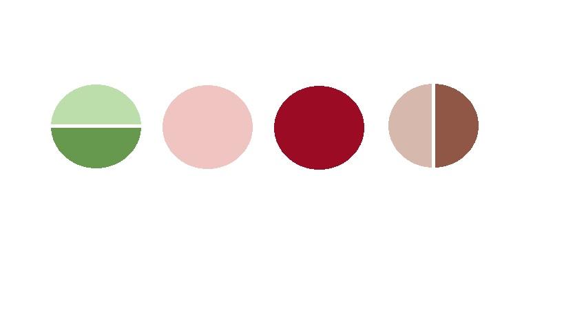 Love at first sight - Paleta barev naší svatby