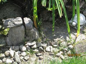 Tyto čtyři kameny jsou zkamenělé dřevo z Náchodska