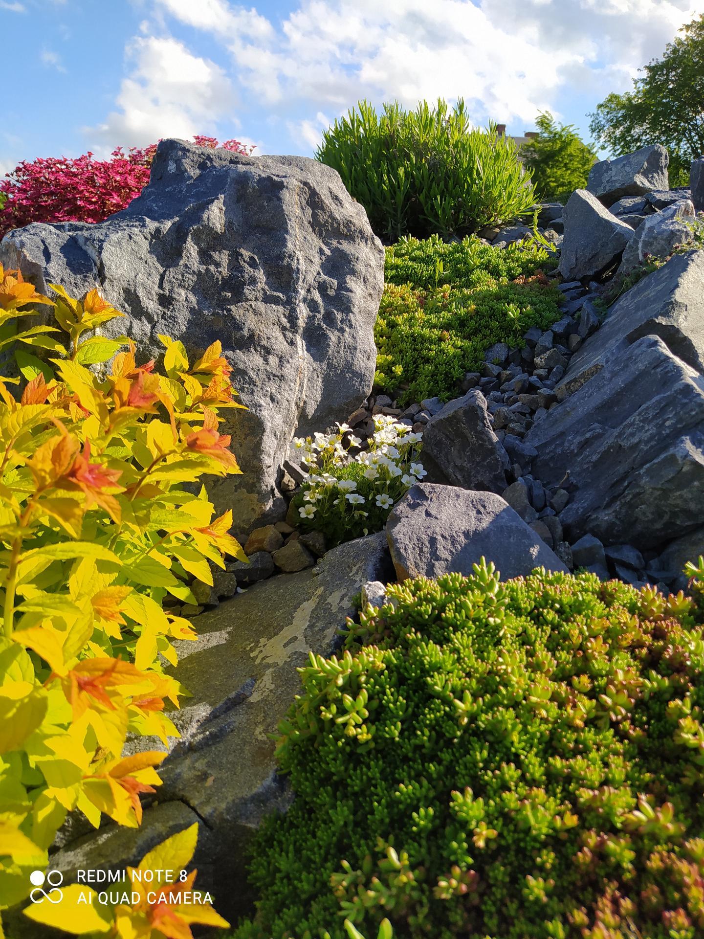 Zahrada a venkovní úpravy pokračujeme 2021 - Obrázek č. 19