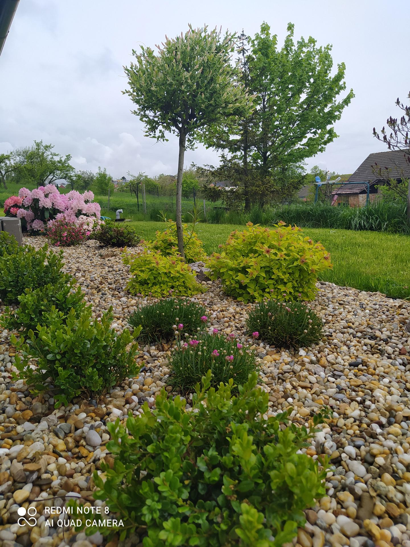 Zahrada a venkovní úpravy pokračujeme 2021 - Obrázek č. 29