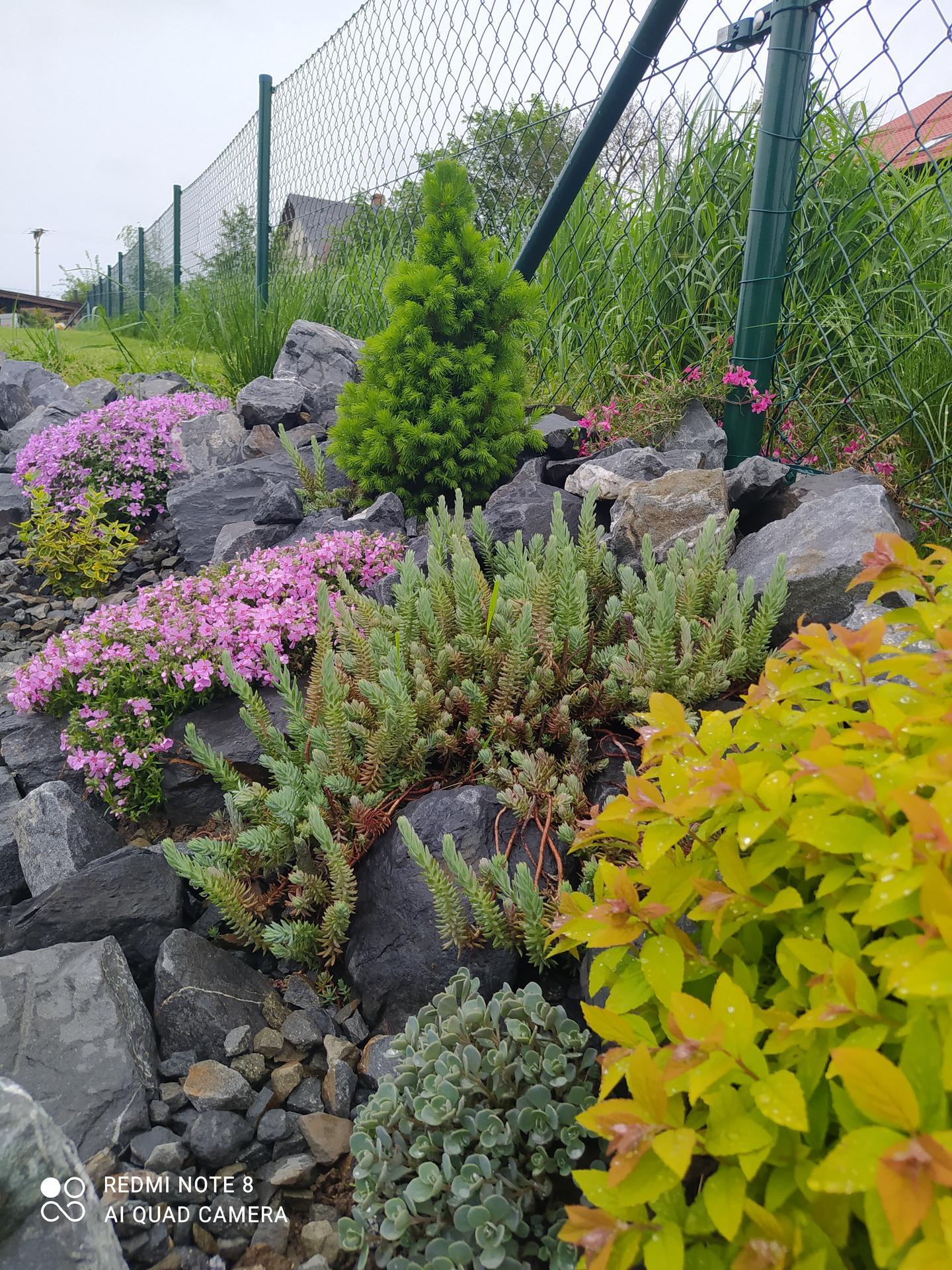 Zahrada a venkovní úpravy pokračujeme 2021 - Obrázek č. 22