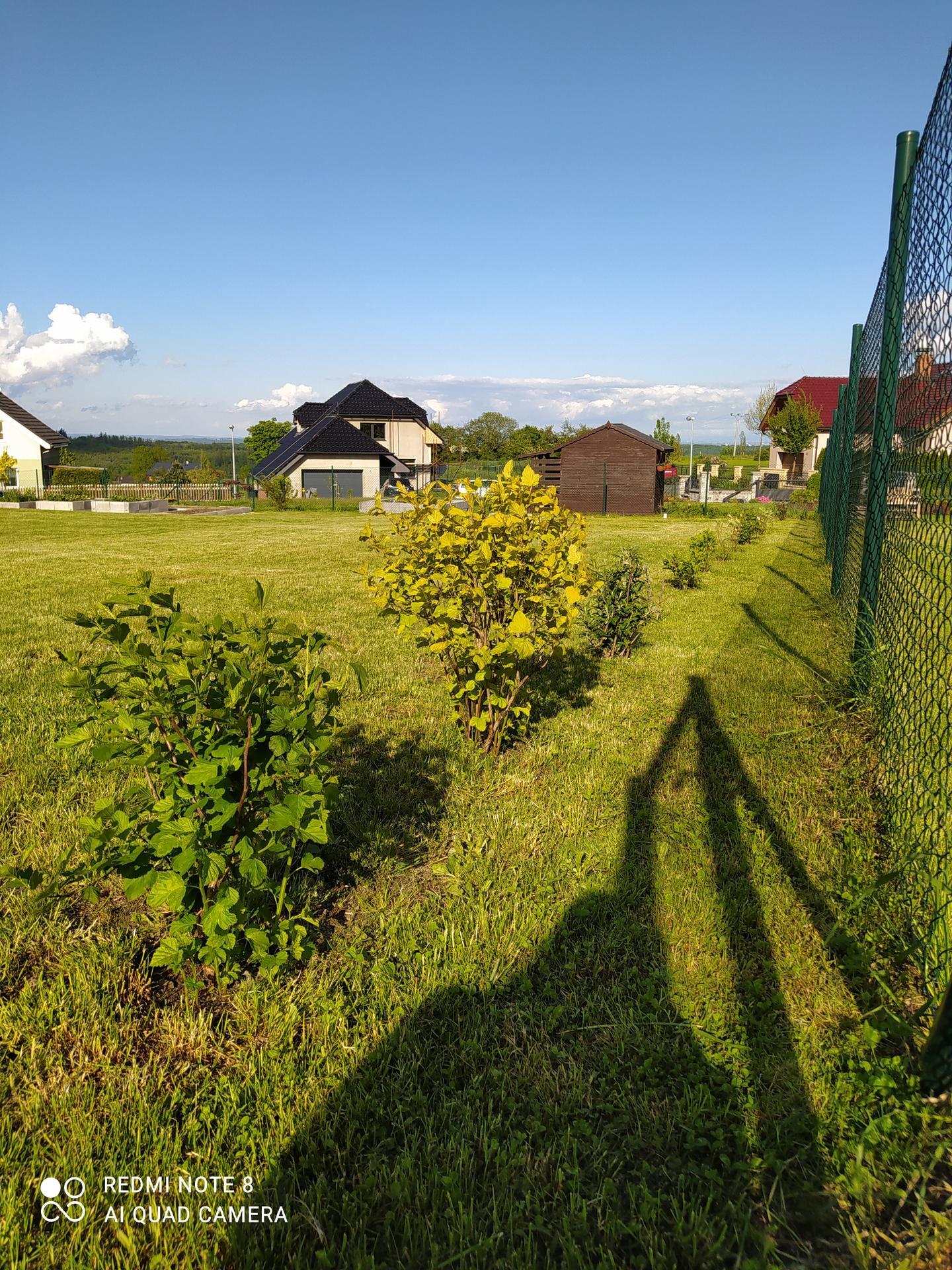 Zahrada a venkovní úpravy pokračujeme 2021 - Obrázek č. 11