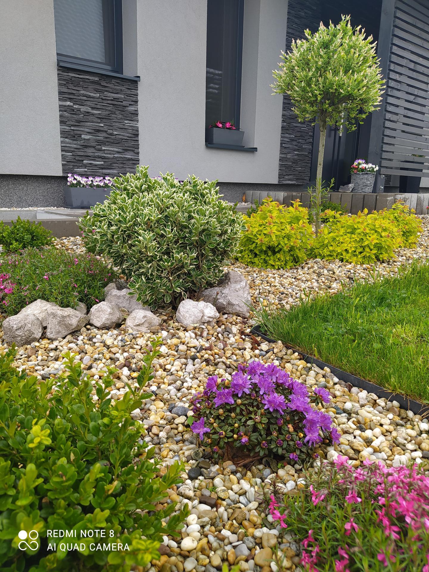 Zahrada a venkovní úpravy pokračujeme 2021 - Obrázek č. 31