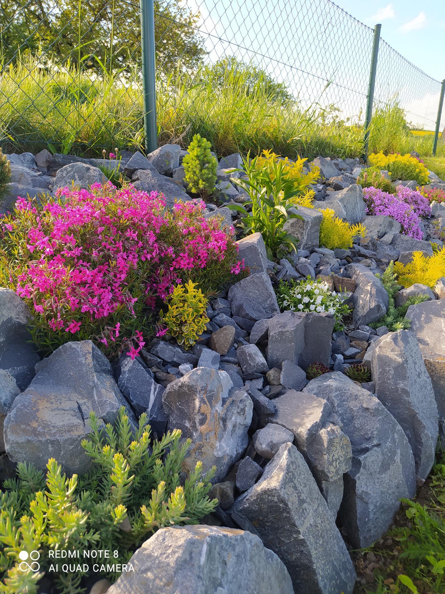 Zahrada a venkovní úpravy pokračujeme 2021 - Obrázek č. 17