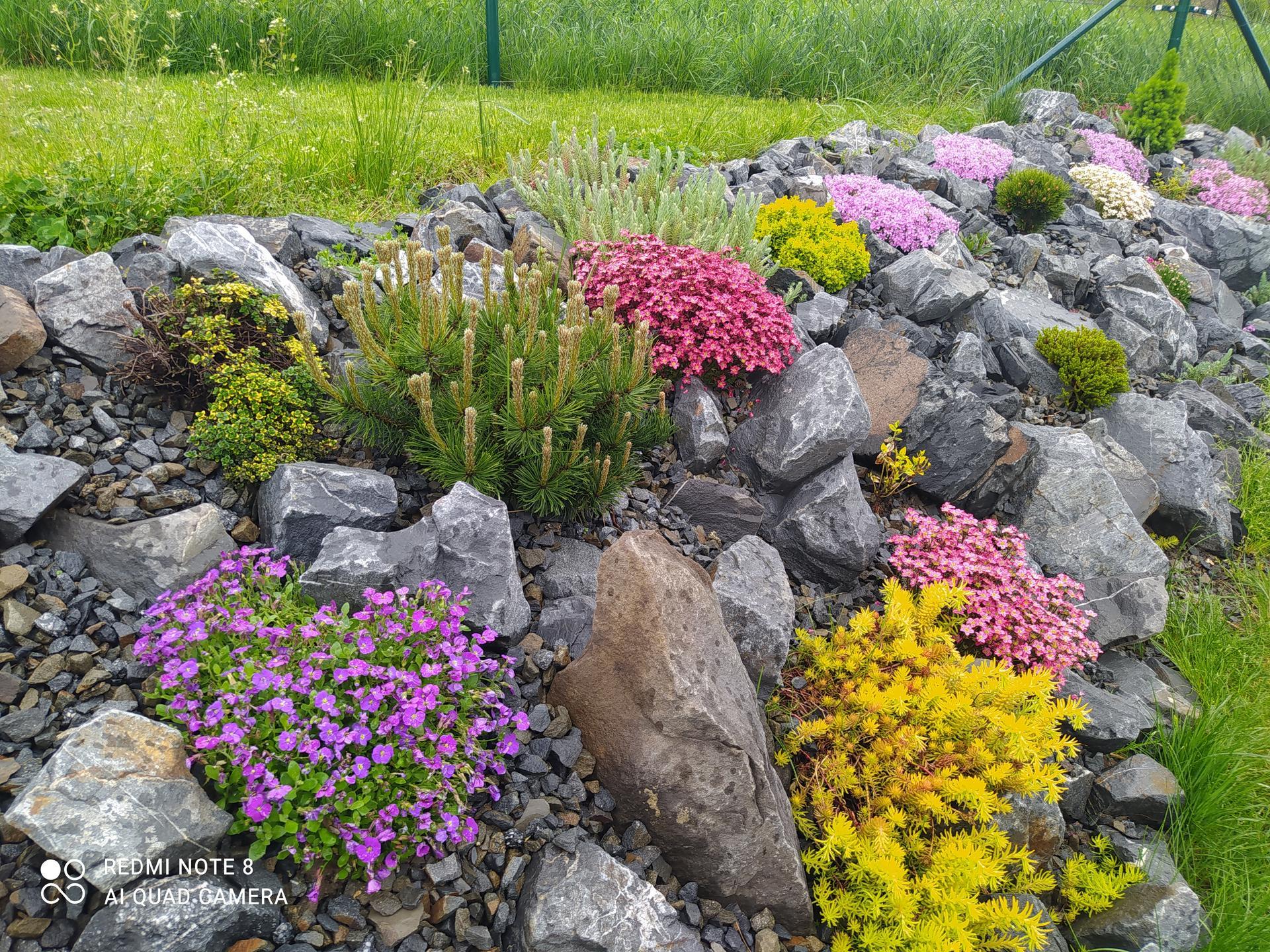 Zahrada a venkovní úpravy pokračujeme 2021 - Obrázek č. 24