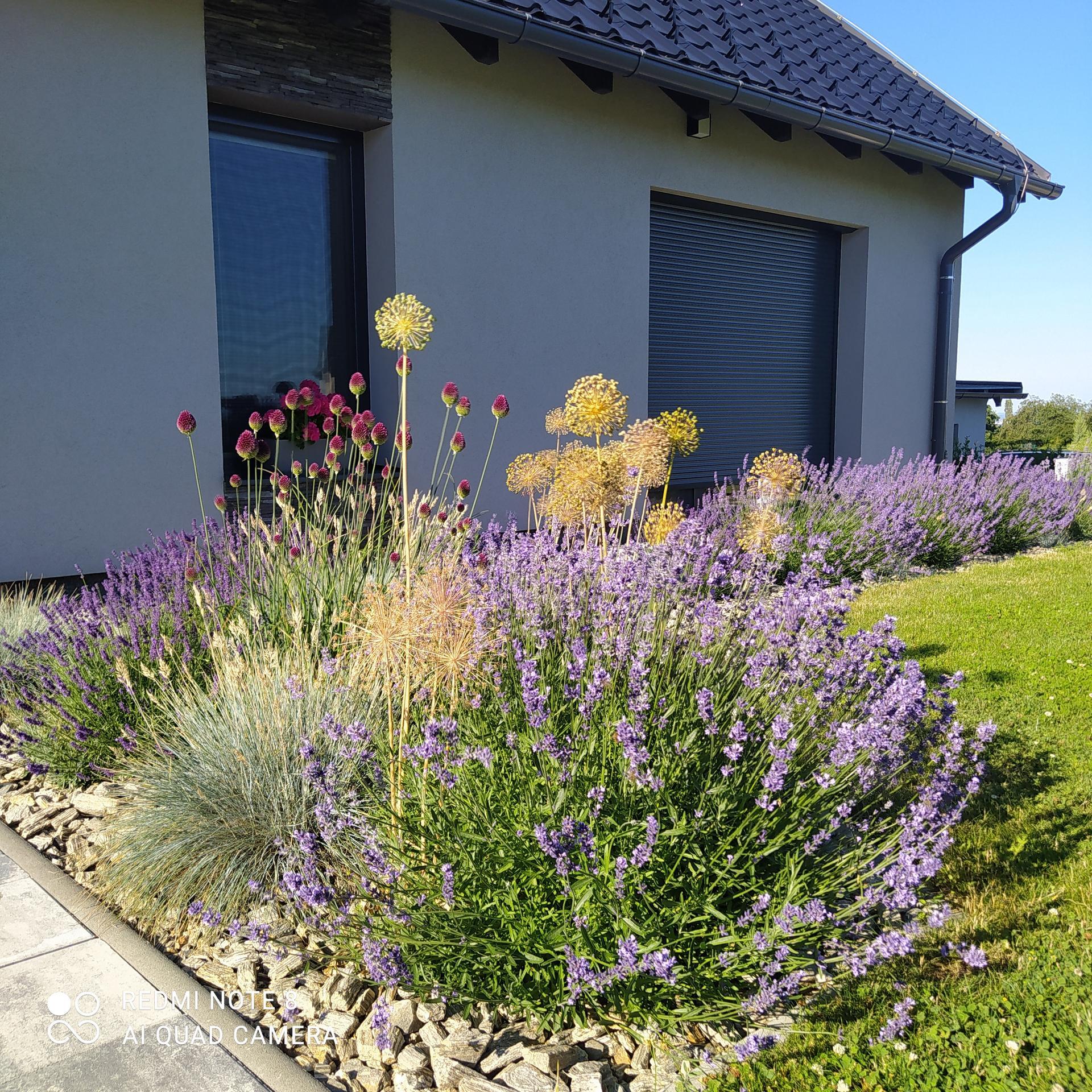 Zahrada a venkovní úpravy pokračujeme 2021 - Obrázek č. 55