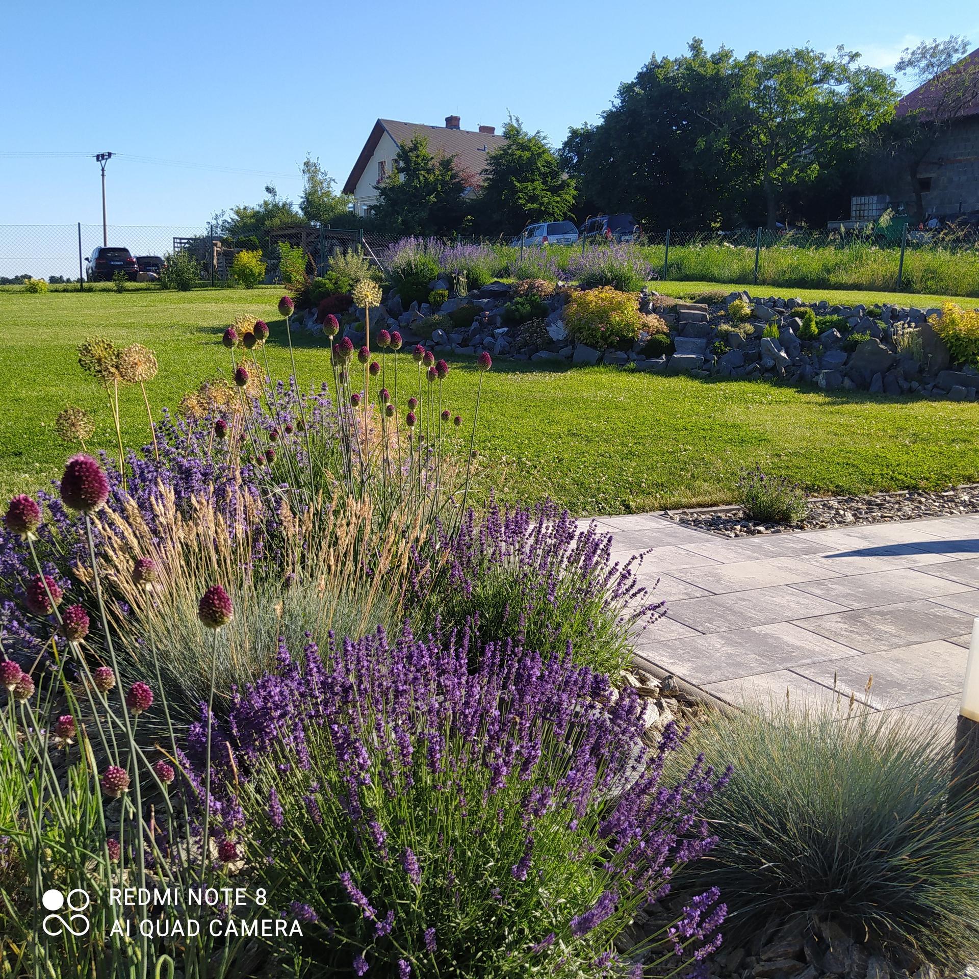 Zahrada a venkovní úpravy pokračujeme 2021 - Obrázek č. 53