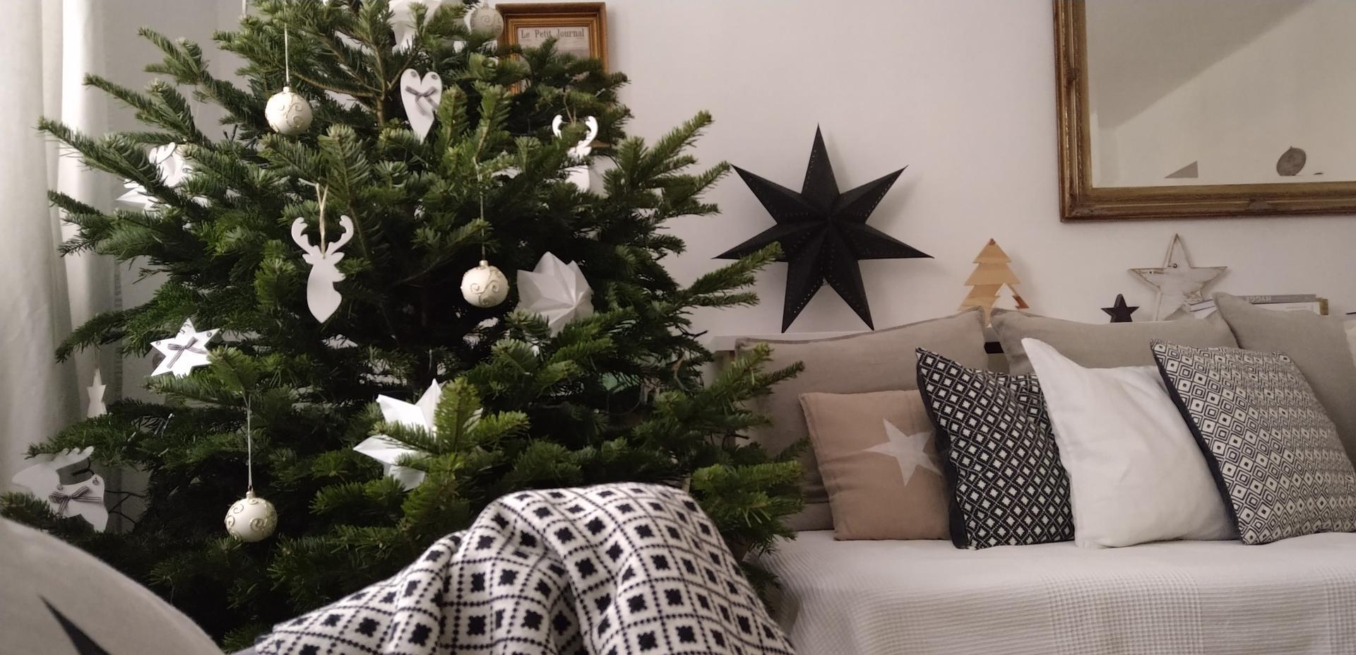 Vianočné dekorácie,advent a vianoce 2020 - Obrázok č. 42