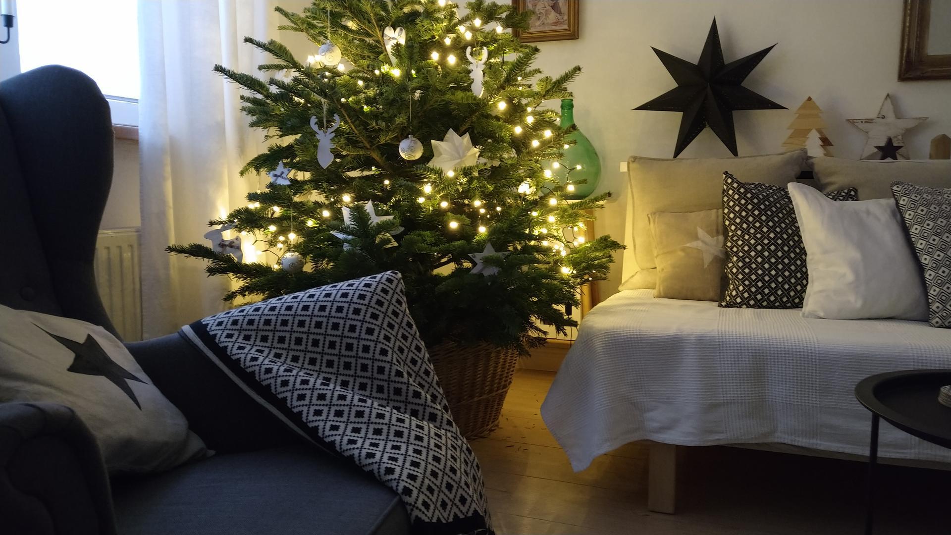 Vianočné dekorácie,advent a vianoce 2020 - Obrázok č. 37