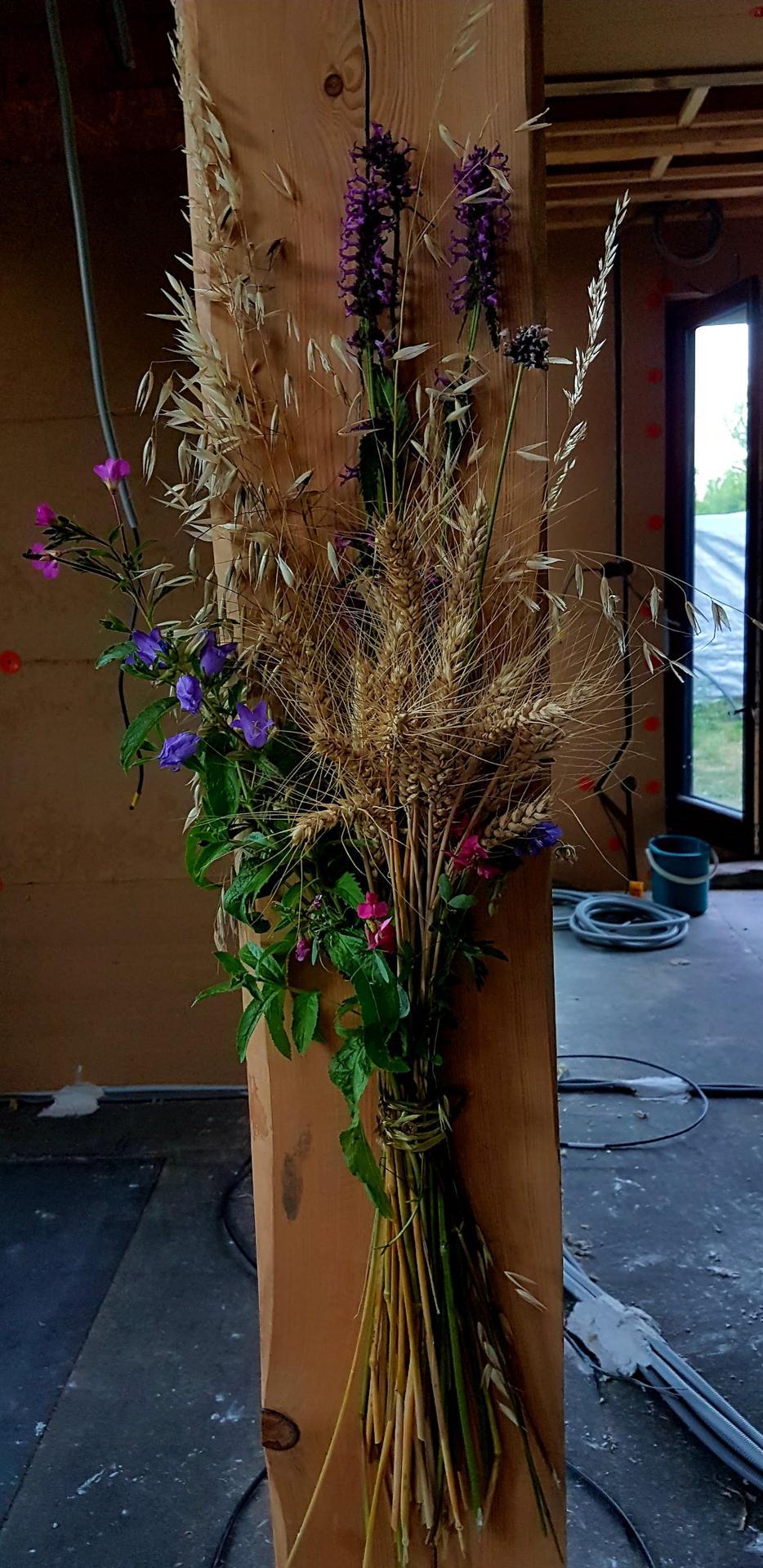 Naša cesta z mesta - Prvé kvety v dome.