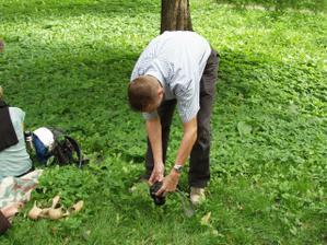 Mužská zábava na pikniku (Alčátka manžel cosi loví v trávě)