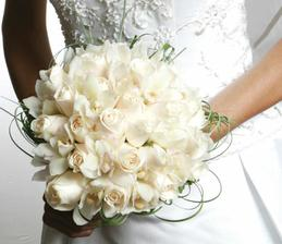 určitě budou bílé růže