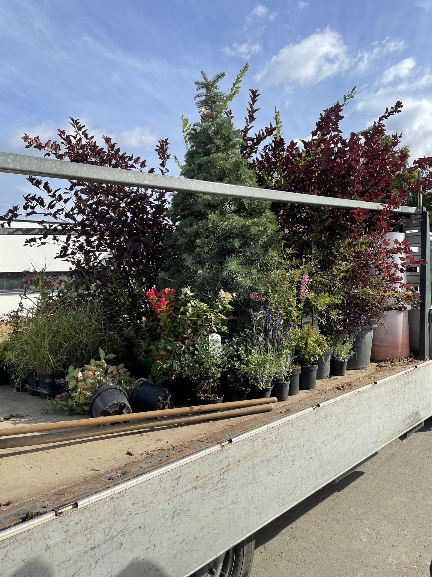 Naše nové doma - Realizace zahrady