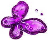 Motýlek purpurově fialový,