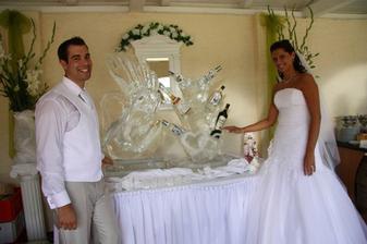 Ledové sochy,