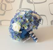 Blue hydra,