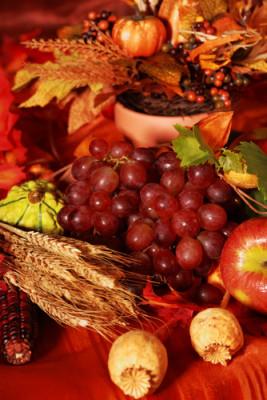 Jesenné čaro - Obrázok č. 11