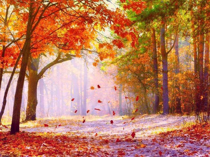 Jesenné čaro - Obrázok č. 32