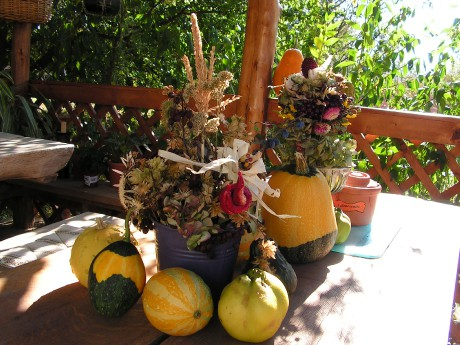 Jesenné čaro - Obrázok č. 46