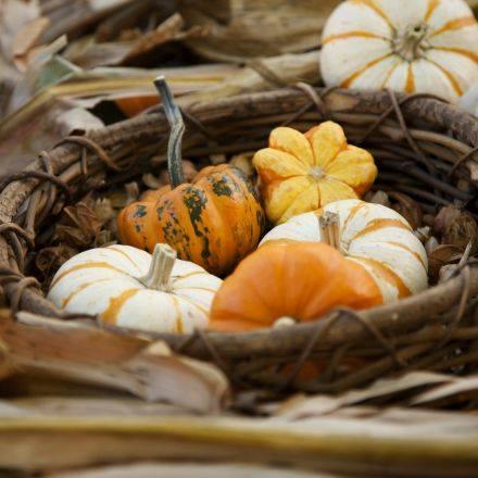 Jesenné čaro - Obrázok č. 70