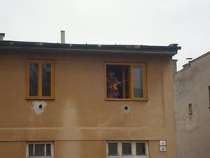 Kuk z okienka