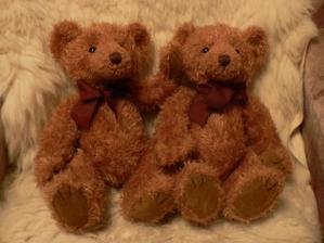 to jsou naši medvídci, kteří budou na autě:-)