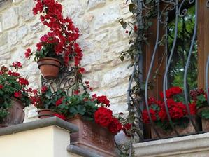 Květiny musí být všude, kam se vejdou.