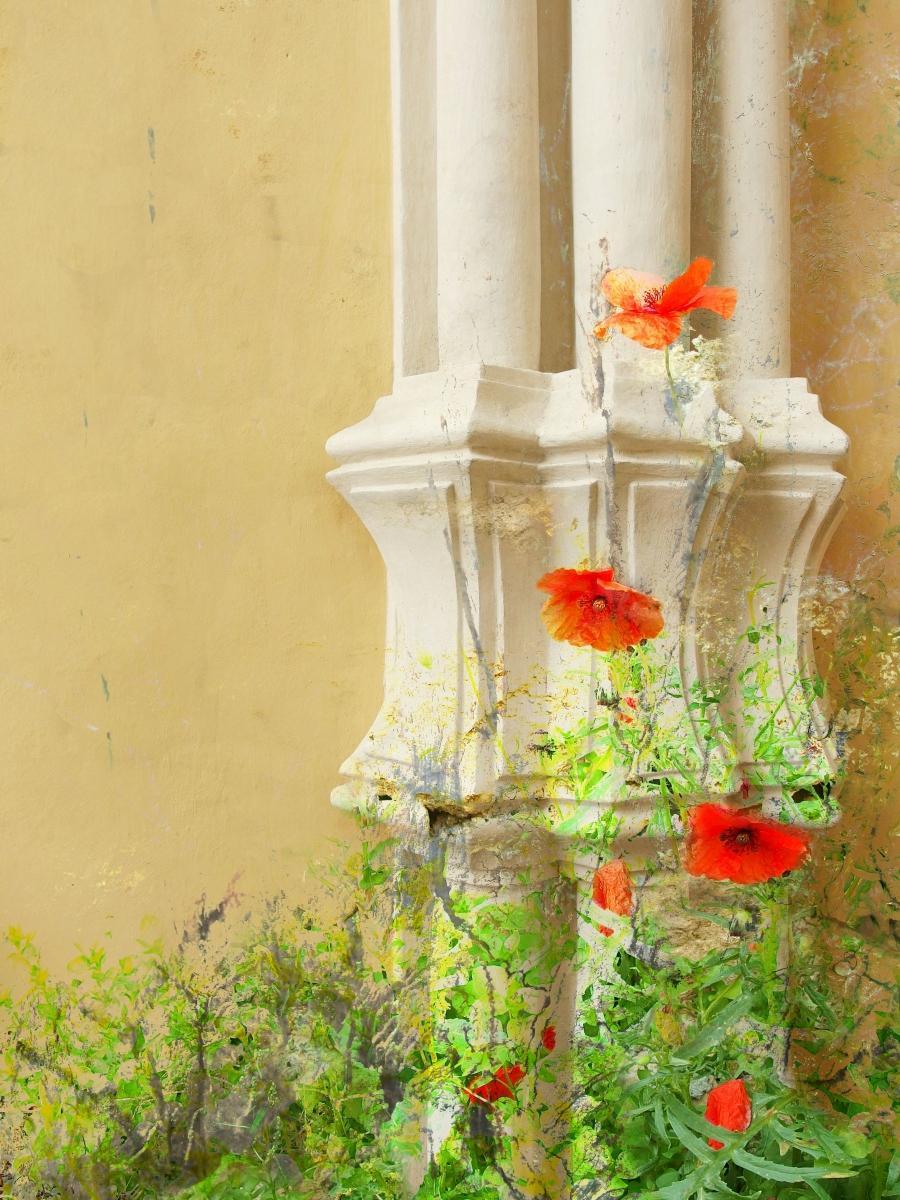 Trocha romantiky - fotomontáž - vzpomínka na léto