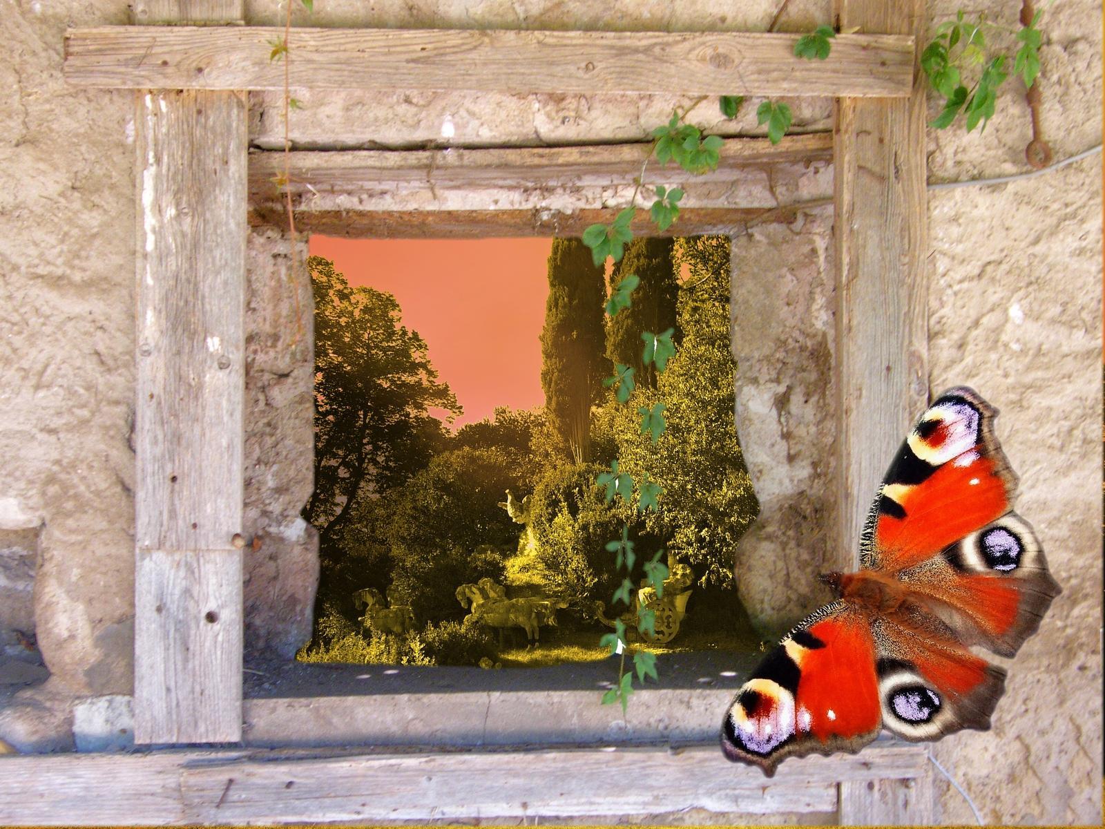 Trocha romantiky - fotomontáž - motýl