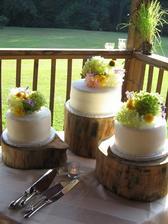 to by se mi líbilo takové podtácy kmeniska pood dorty - ale dortíky jiné :)