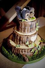 náš vybraný svatební dortík :)