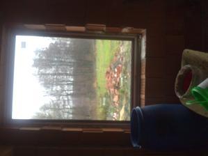 okno nad kuchynskou linku ...