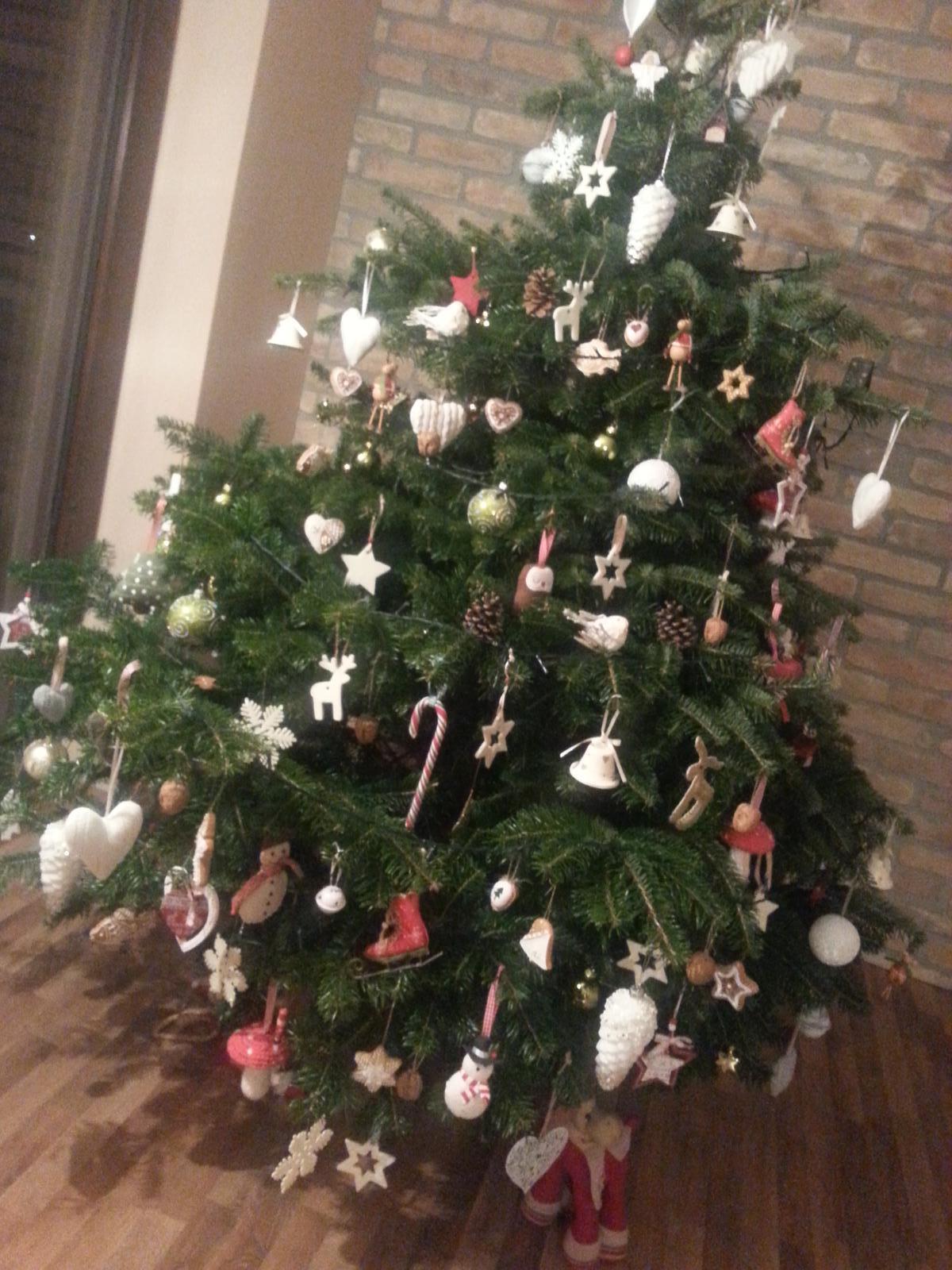 U nás doma  🏠 🌼 🌞👫👭👶 - Naše prvé vianoce v našom domčeku :-)