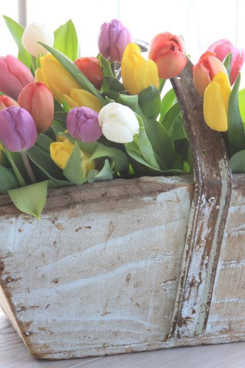 """""""Kvetinkovo"""" - Obrázok č. 19"""