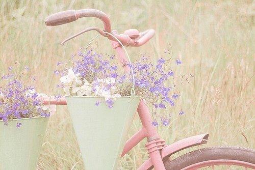 """""""Kvetinkovo"""" - Obrázok č. 25"""