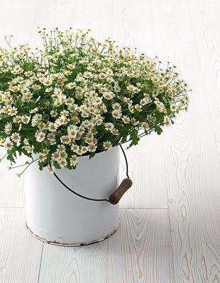 """""""Kvetinkovo"""" - Obrázok č. 43"""