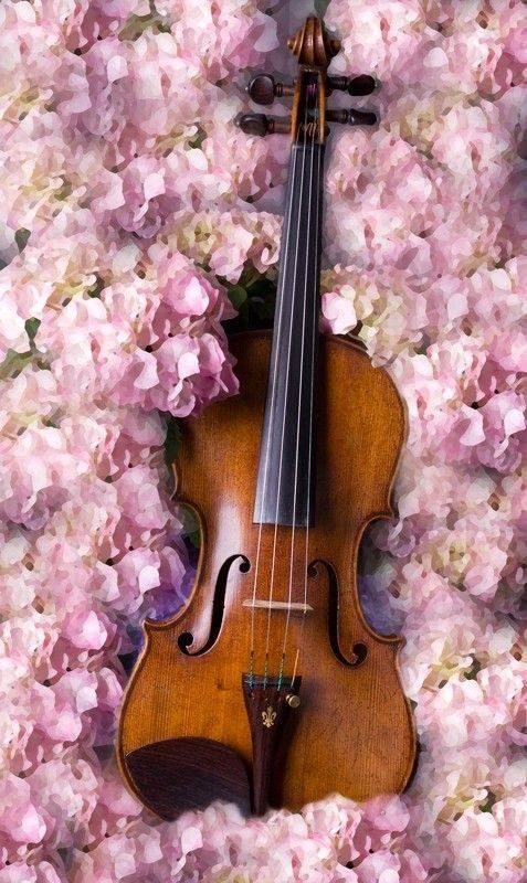 """""""Kvetinkovo"""" - Obrázok č. 63"""