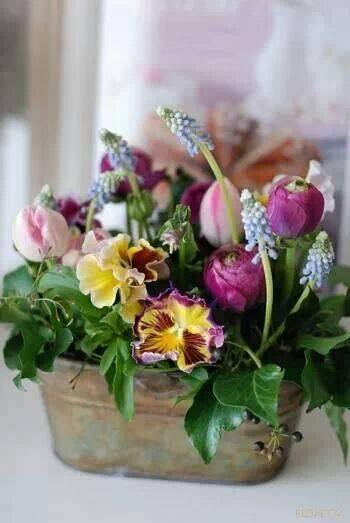 """""""Kvetinkovo"""" - Obrázok č. 65"""