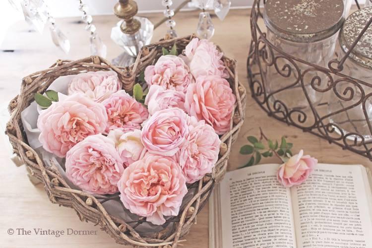 """""""Kvetinkovo"""" - Obrázok č. 81"""
