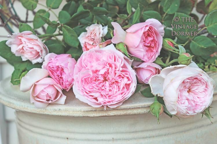 """""""Kvetinkovo"""" - Obrázok č. 85"""