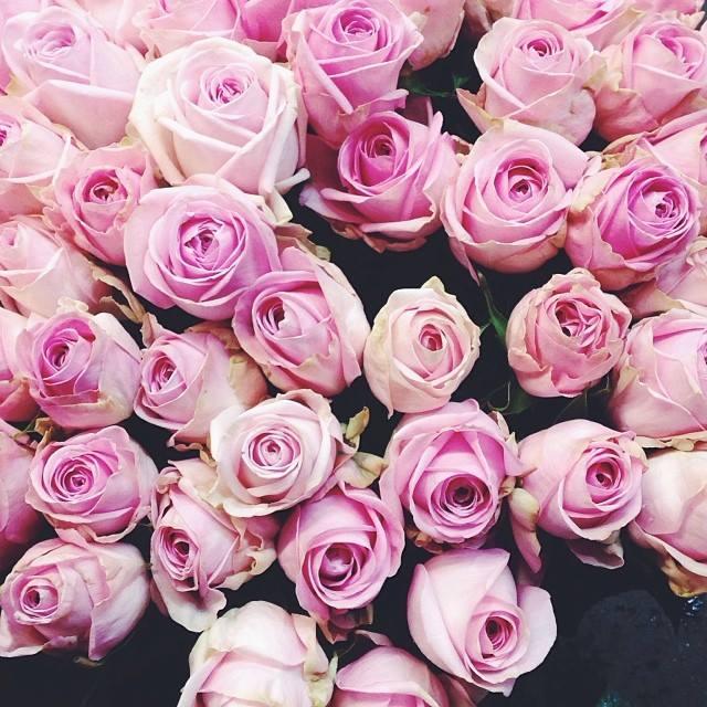 """""""Kvetinkovo"""" - Obrázok č. 89"""