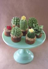 Podnos je krásny,ale tie marcipánové mufiny vo forme kaktusov nemajú chybu :-)