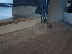 nevyhladeny poter pri stenach