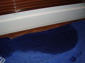 uterak po asi po 10-15 minutach pod oknom