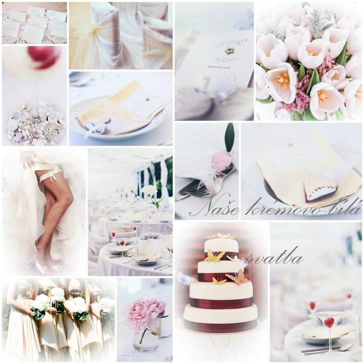 Moje svatba - Obrázek č. 1